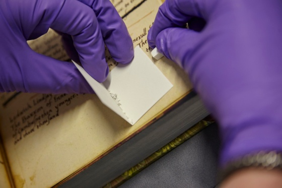 Non-invasive-sampling-extracting-protein-from-parchment-using-eraser-crumbs-Reproduced-by-courtesy-of-The-John-Rylands-Library-University-of-Manchester-2.jpg